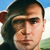 Man vs. Chimp